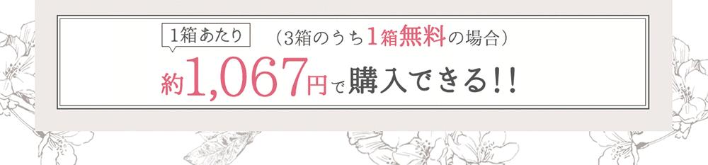 1箱あたり(2箱購入+1箱プレゼントの場合) 約1,067円で購入できる!