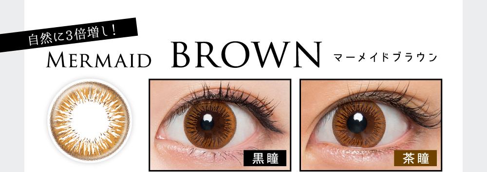 マーメイドブラウン(Mermaid Brown)