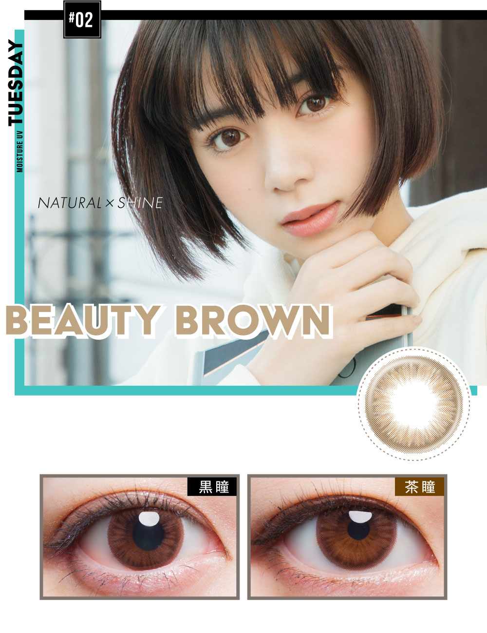 BEAUTY BROWN