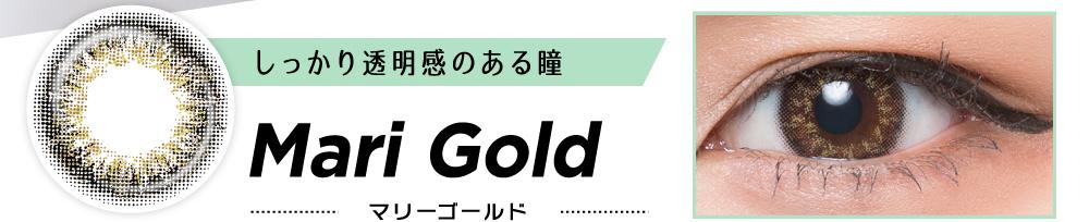 しっかり透明感のある瞳 Mari Gold マリーゴールド