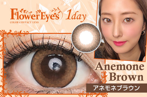 anemone_brown_catch