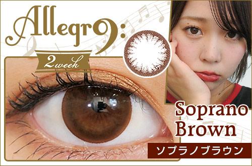 【レポ】アレグロ2WEEK ソプラノブラウン、小さめなサイズ感のブラウン1トーンカラコン