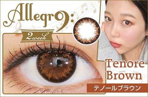 【レポ】アレグロ2WEEK テノールブラウン、ヒトデのような独特な模様のブラウン