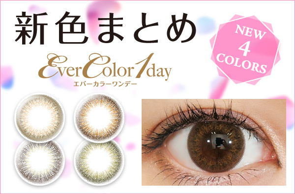 evercolor_new
