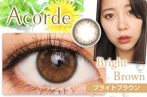 【レポ】アコルデ ブライトブラウン、黄土色の発色が瞳を立体的に見せる☆リアルな瞳の輪郭になれます!